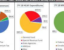 Let MNCare Provider Tax Expire - THREE PIE CHARTS