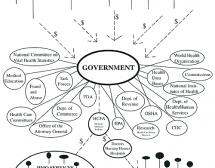 DIAGRAM - Government, Health Care and Taxpayers