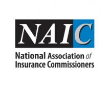 Feds Pressure NAIC to Eliminate Small Business Health Insurance Options